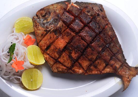 Fish 65